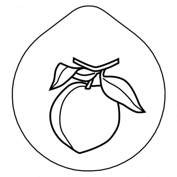 ACCESSOIRE Laserung 'Pfirsich' Edelstahldeckel für Karaffe